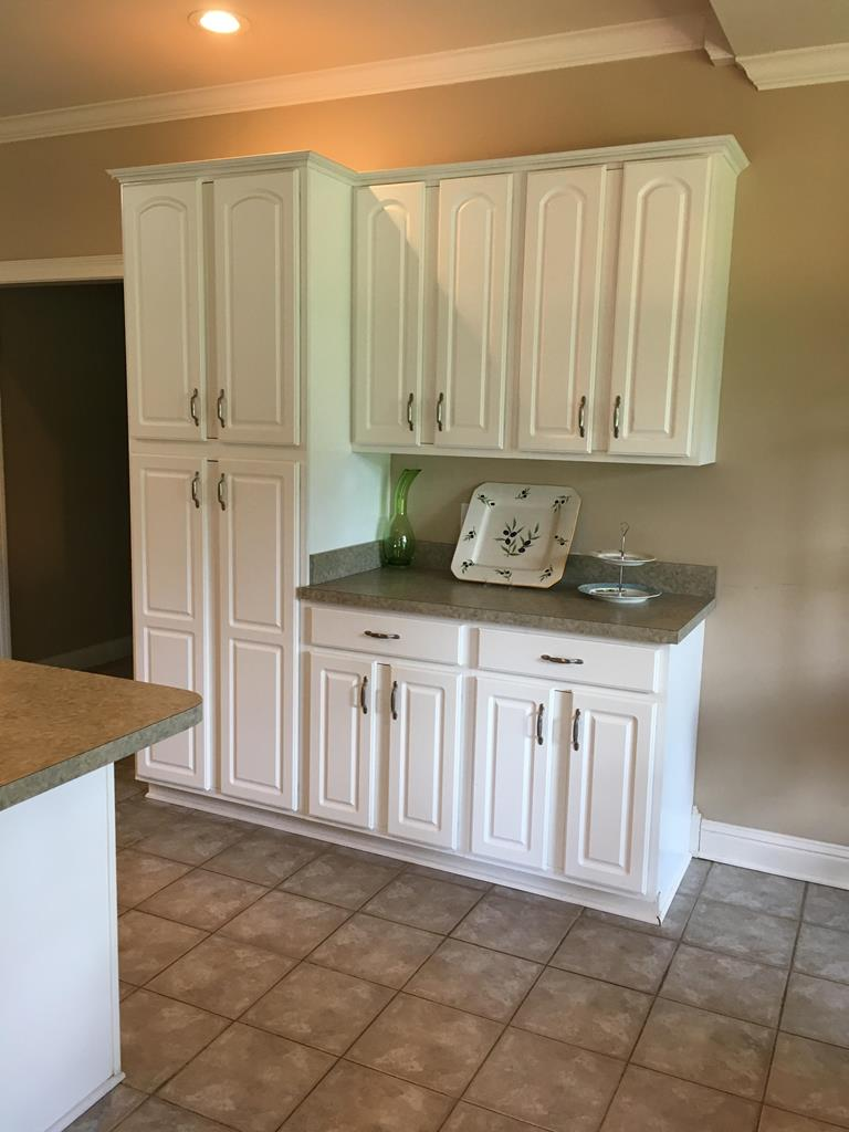 Additional Pantry & Cabinets